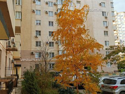 2-комнатная квартира 64 м² Дом